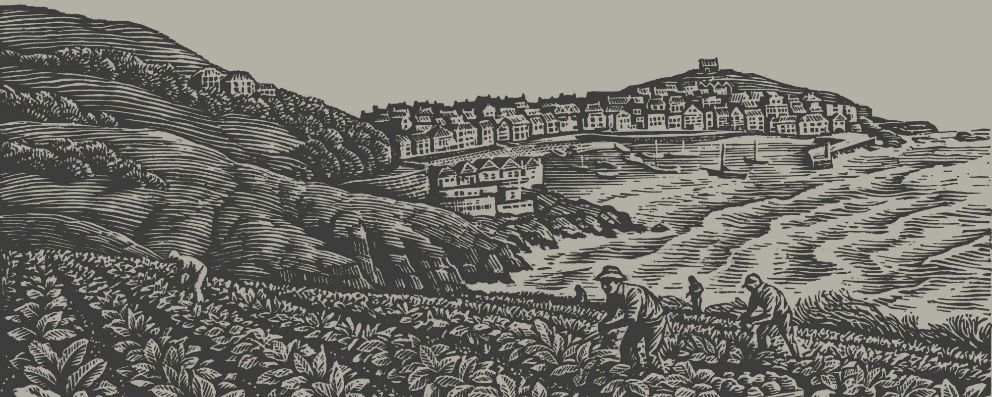 Woodcut harbour